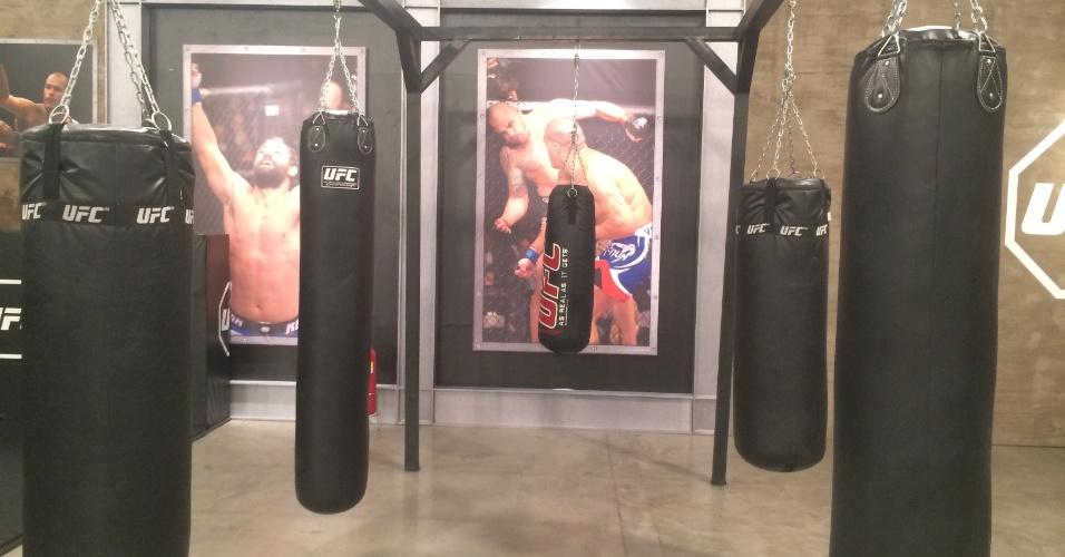 Lutadores que fizeram história no UFC aparecem em toda a parte na decoração da academia