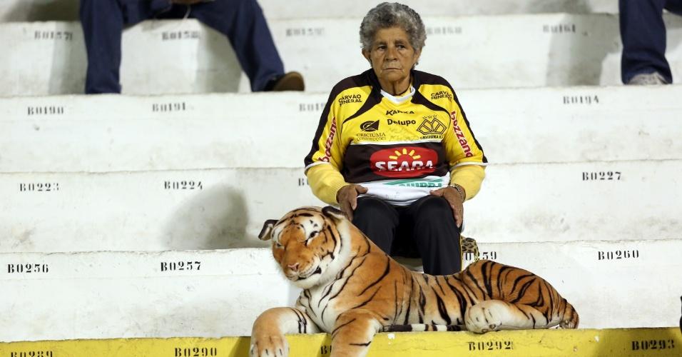 28.mai.2014 - Torcedora do Criciúma acompanha partida acompanhada de tigre de pelúcia na arquibancada