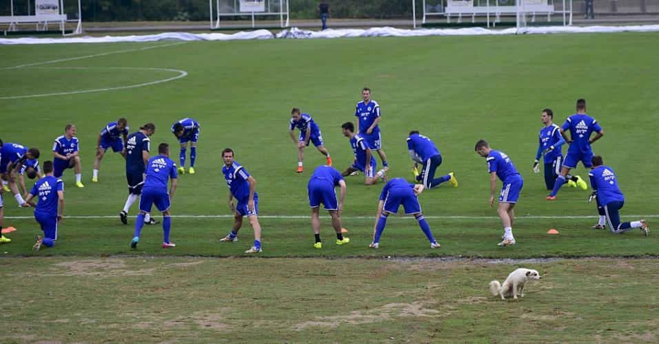 Com a presença de cachorra, jogadores da Bósnia-Herzegovina fazem aquecimento no estádio Municipal Antonio Fernandes, no Guarujá
