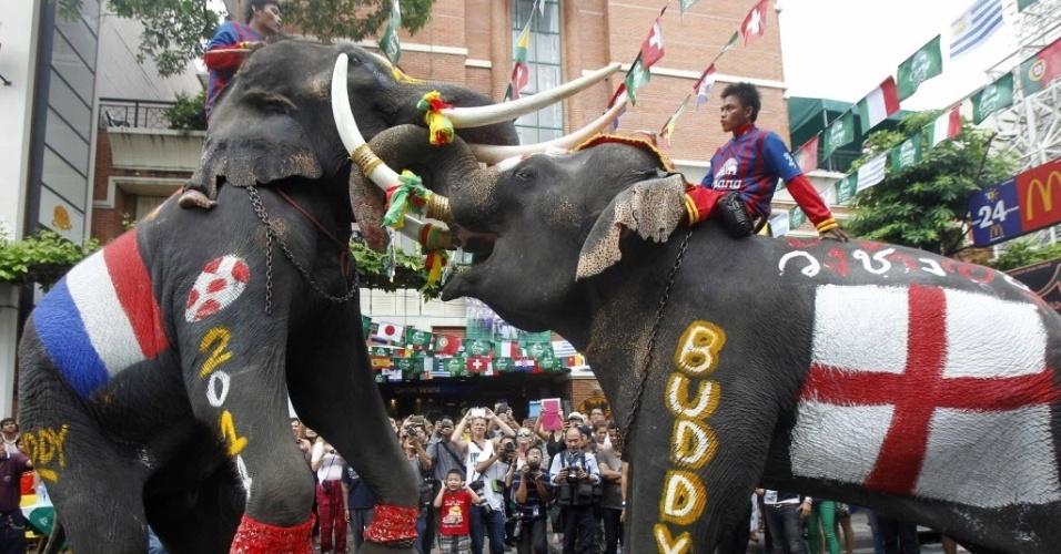 Aproveitando o clima de Copa do Mundo, dois elefantes de Bangcoc participam de evento representando os países do Mundial