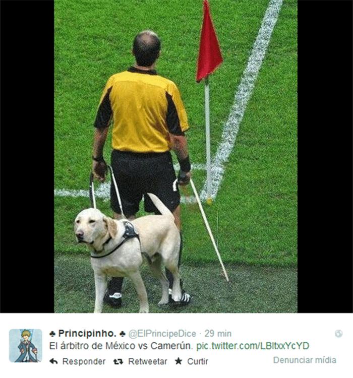 Um cão-guia e uma bengala foram adicionadas a foto do bandeirinha de México e Croácia.