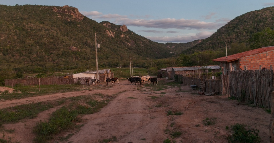 A tribo indígena Xucuru, escuta o jogo do Brasil contra o México pelo radio, pois não tem energia elétrica. O jogador da seleção brasileira Paulinho, tem descendência dessa tribo de Pesqueira no interior do Pernambuco