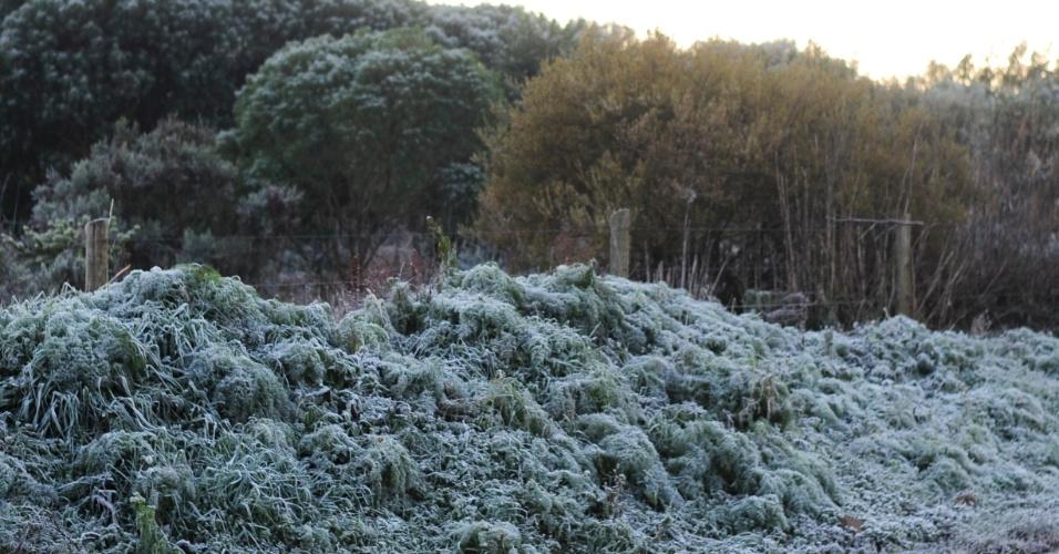Cena da paisagem de São Joaquim após a madrugada mais fria do ano no país