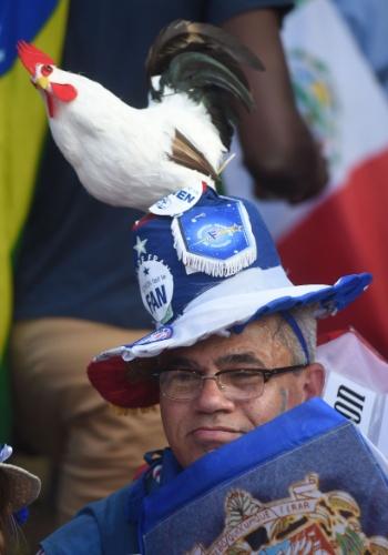 20.jun.2014 - Torcedor francês não se separa do galo, símbolo dos Bleus, na hora de torcer na partida contra a Suíça