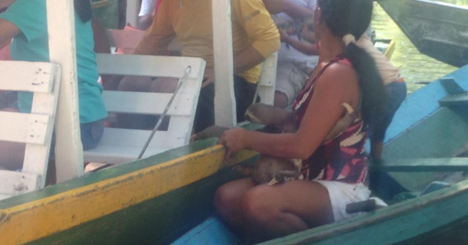 Mulher se aproxima dos turistas com um filhote de preguiça e pede dinheiro em troca de uma foto
