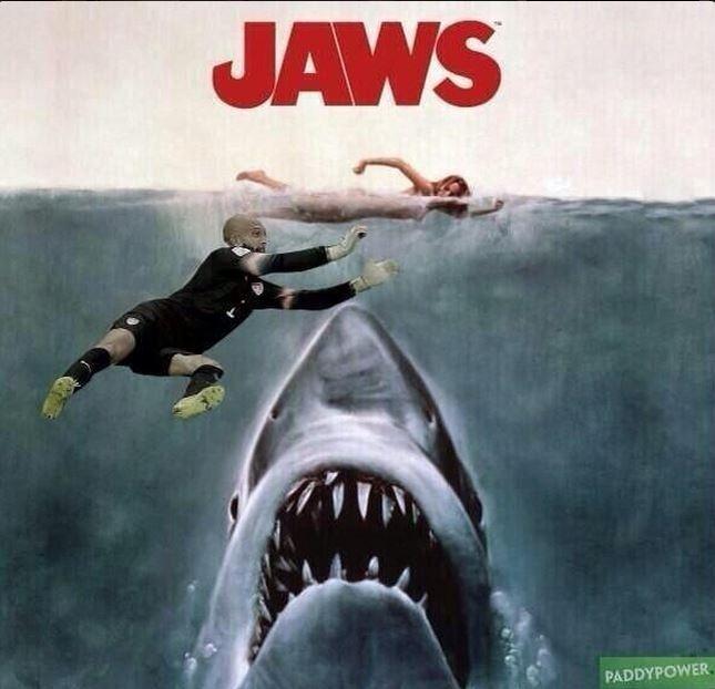 Quando for nadar no mar aberto, lembre-se de chamar o salva-vidas Tim Howard