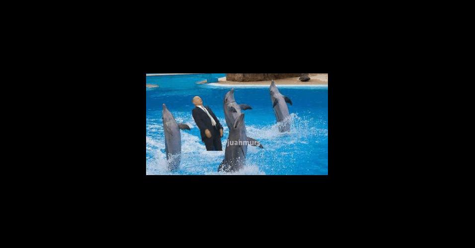 Participação especial no SeaWorld