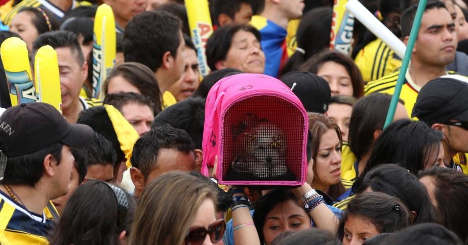 Torcedora leva seu cachorro para recepcionar a seleção colombiana, que foi recebida com festa em Bogotá após a boa campanha na Copa