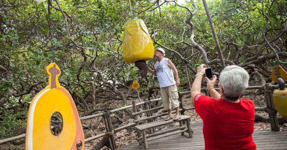 Turistas visitam o maior cajueiro do Mundo, no Rio Grande do Norte.