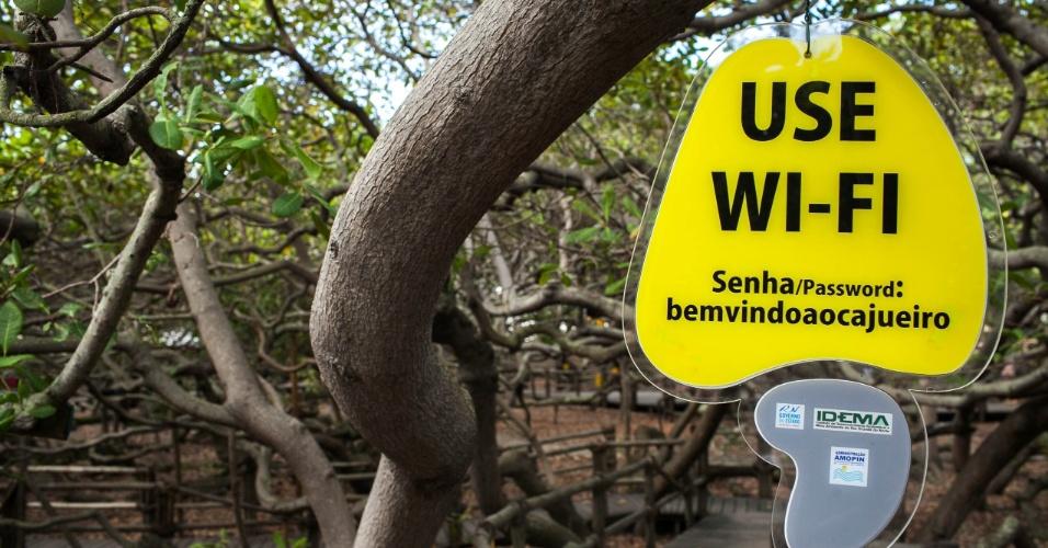 Placa com senha de wi-fi para visitantes do cajueiro de Pirangi.