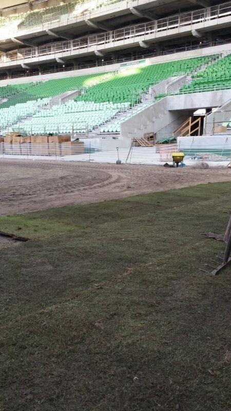 Estádio do Palmeiras começa a receber o gramado neste sábado. Previsão é de que grama fica pronta em 45 dias