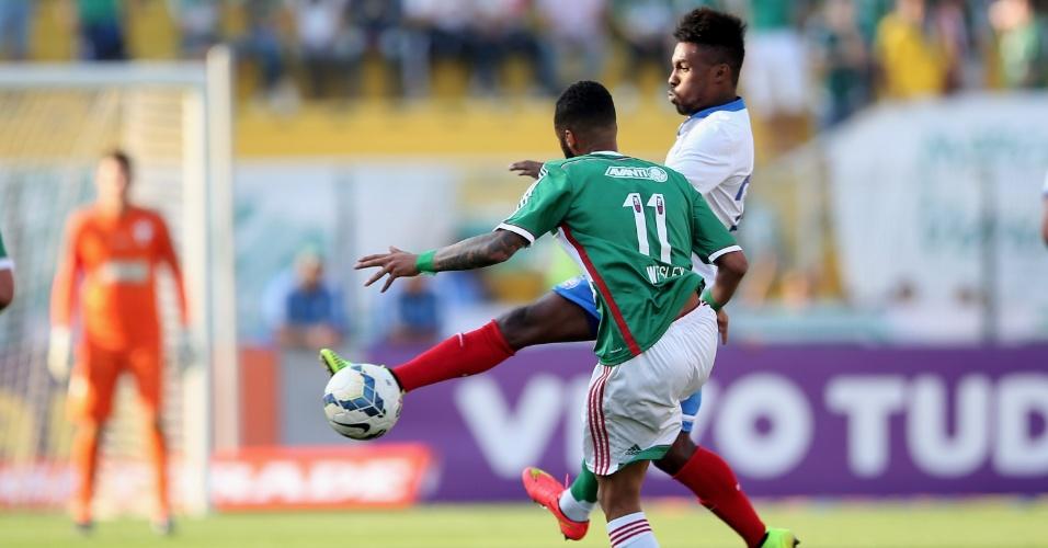 Wesley tenta fugir da marcação do Bahia em jogo do Palmeiras pelo Brasileirão