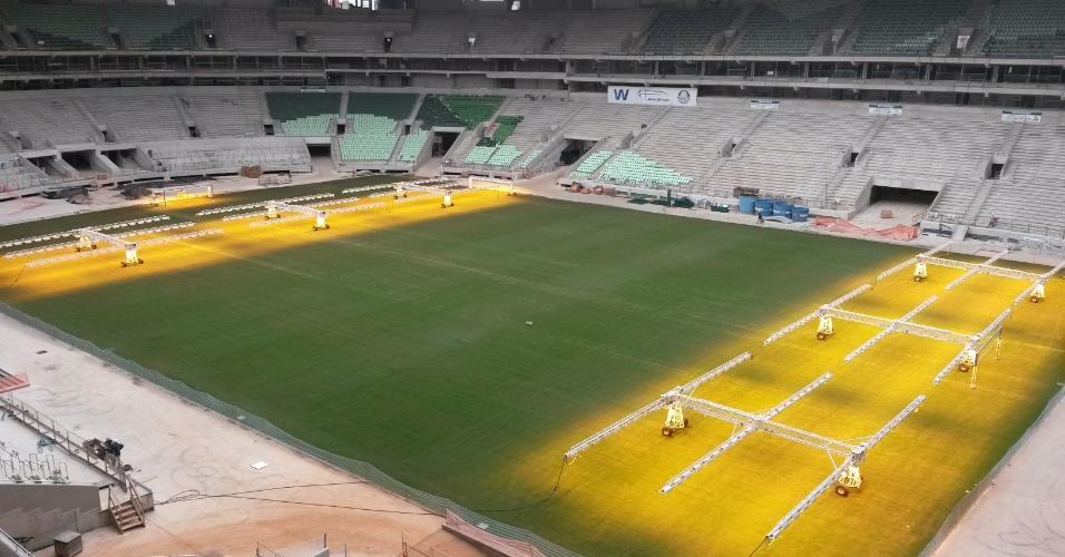 Arena do Palmeiras recebe luz artificial no seu gramado todos os dias