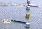 Brasileiro tem ouro do Mundial de canoagem na mão, mas cai na remada final - Reprodução