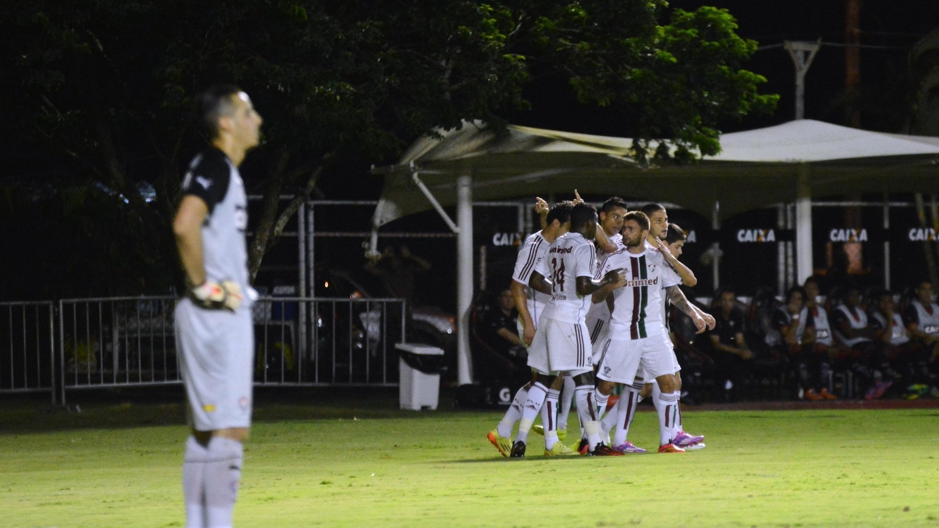 Jogadores do Fluminense comemoram gol contra o Vitória pelo Brasileirão