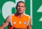 Santa Cruz anuncia ex-Fluminense e reforça zaga para reta final da Série B - Moyses Ferman/Photocamera