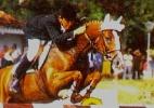 Nos anos 90, um cavalo brasileiro virou lenda do hipismo por seu tamanho - Reprodução