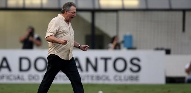 Abel Braga interessa ao Santos para 2018. Clube diz que técnico é torcedor do Peixe