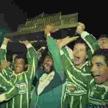 Jogadores do Palmeiras comemoram o título do Campeonato Paulista de 1993 - Marlene Bergamo/Folhapress