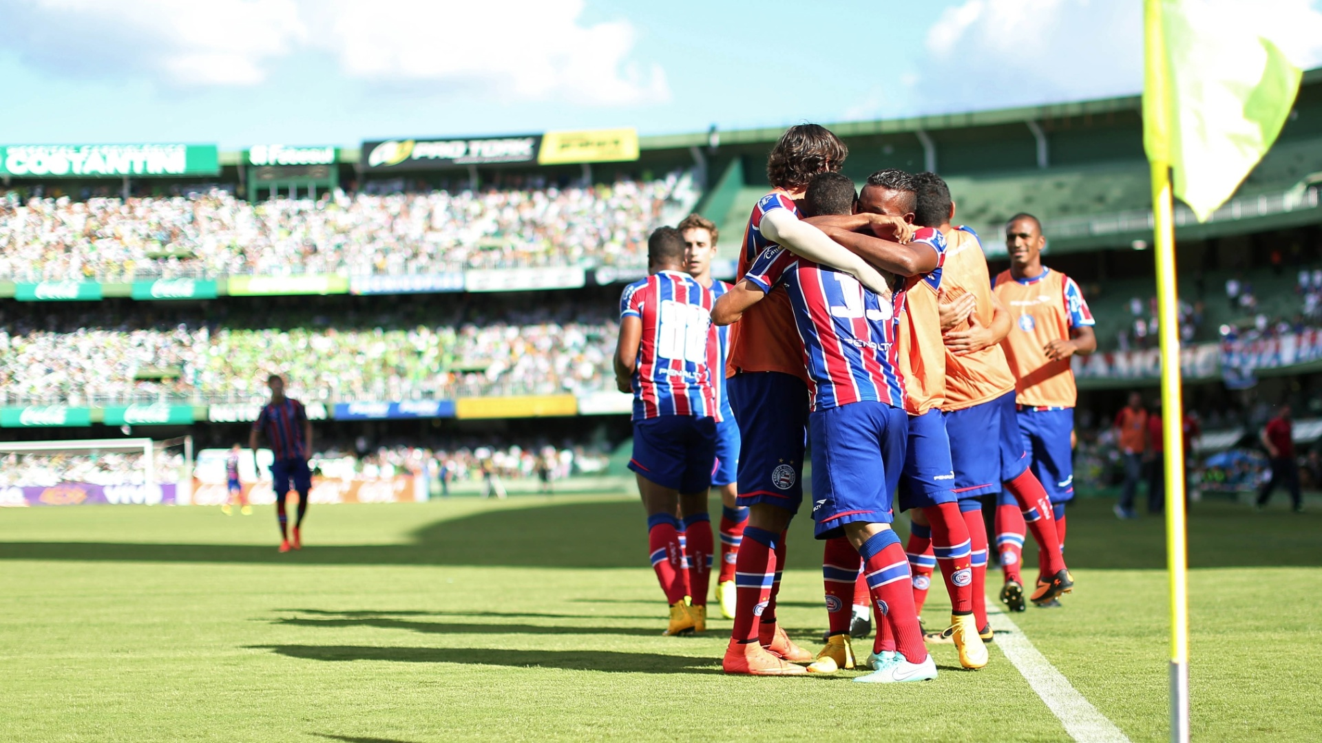 Jogadores do Bahia comemoram gol na última rodada do Brasileirão 2014