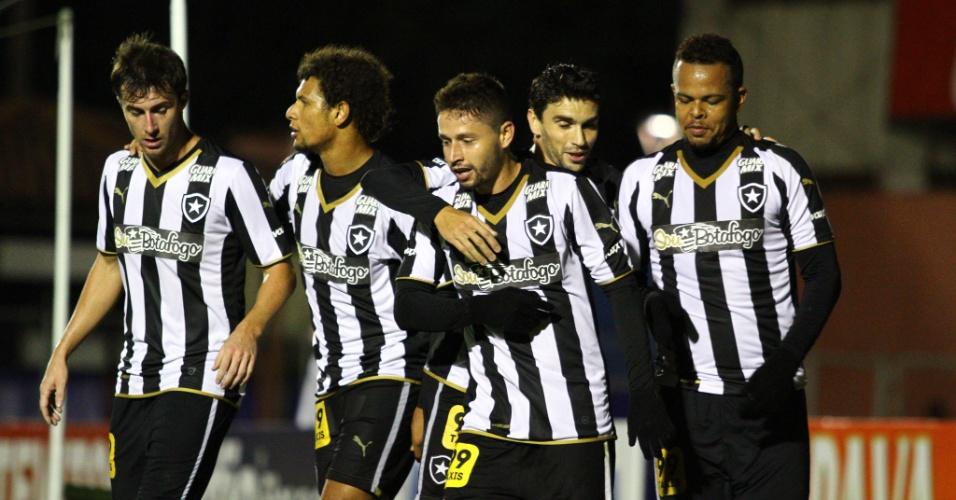 Jogadores do Botafogo comemoram gol contra o Paraná na Série B