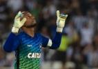 Botafogo inicia temporada com volta de ídolo, novo comandante e apostas - Thiago Ribeiro/AGIF
