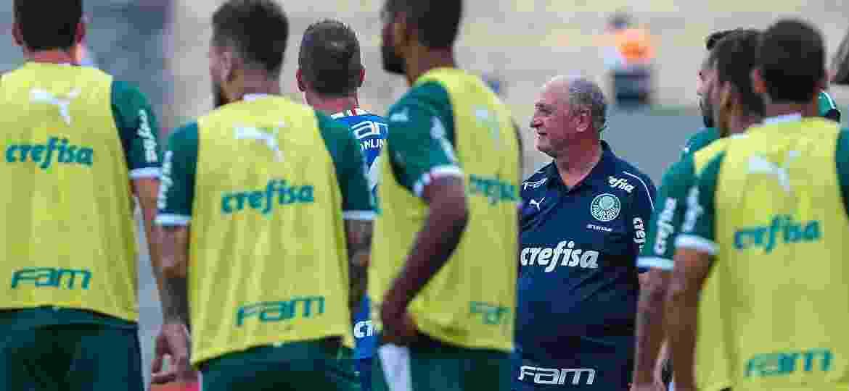 Palmeiras, de Luiz Felipe Scolari, vai enfrentar o Novorizontino nas quartas de final - Ale Cabral/Agif