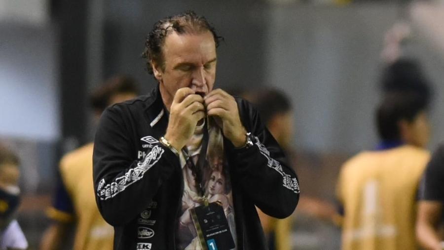 Campeão da Libertadores com o clube, Cuca volta ao Atlético-MG após sete anos - Ivan Storti