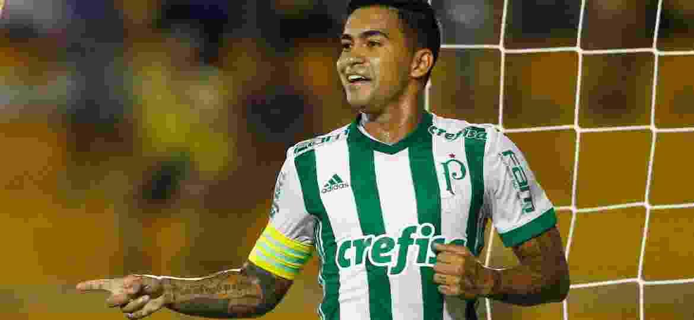 Dudu comemora gol marcado pelo Palmeiras contra o Novorizontino - Thiago Calil/AGIF