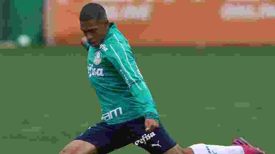 Lateral Esteves, revelado pela base do clube, atuou no time profissional nesta temporada - Cesar Greco/Ag. Palmeiras/Divulgação