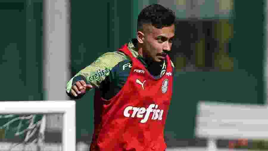 Alan, do Palmeiras, durante treinamento na Academia de Futebol - Cesar Greco