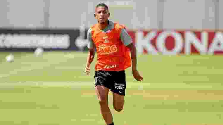 Formiga - Rodrigo Coca/ Ag. Corinthians  - Rodrigo Coca/ Ag. Corinthians