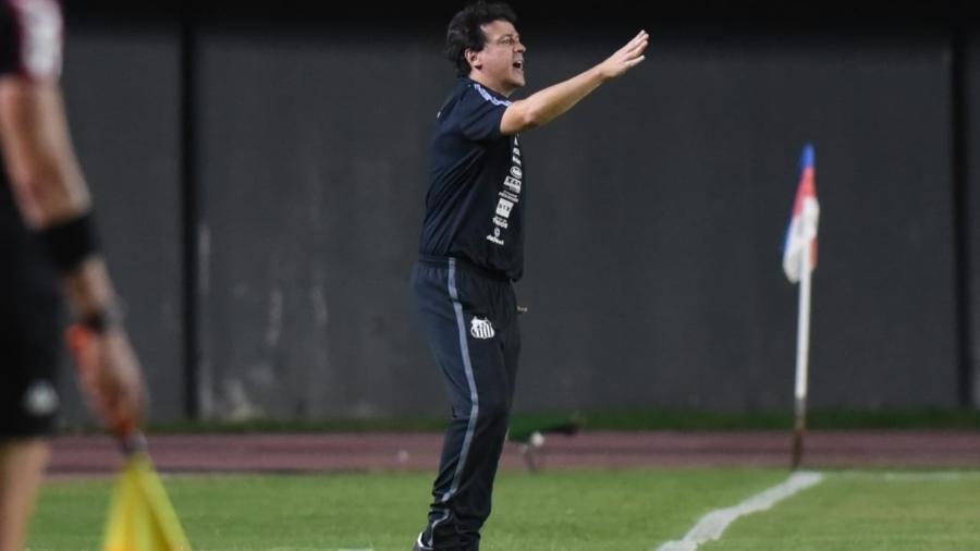 Diniz auxilia jogadores do Santos na beira do campo - Ivan Storti