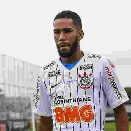Everaldo jogou 15 minutos na vitória de ontem sobre o Goiás - Rodrigo Gazzanel/Agência O Dia/Estadão Conteúdo
