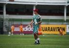 Bruno Haddad/Fluminense F.C.