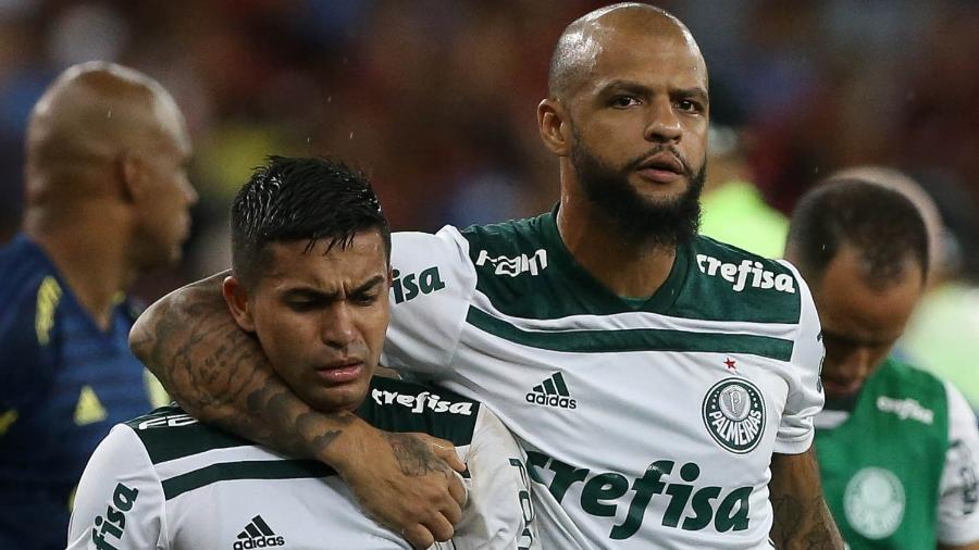 Felipe Melo e Dudu, jogadores do Palmeiras - Cesar Greco/Ag. Palmeiras/Divulgação