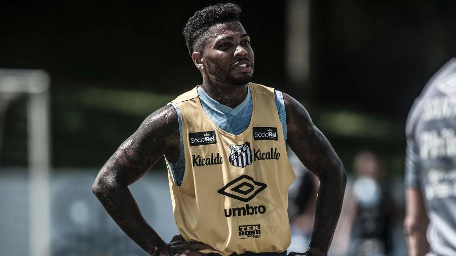 Marinho vai voltar a jogar depois de longo tempo em recuperação - Ivan Storti/Santos FC
