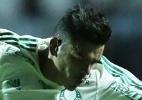 Fabio Menotti / Ag. Palmeiras/ Divulgação