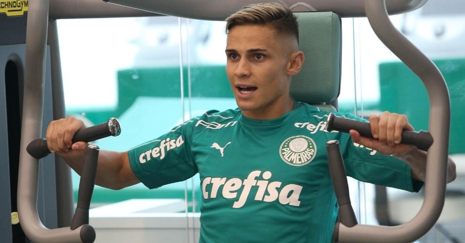 ed6ae84768 Palmeiras - Times - UOL Esporte