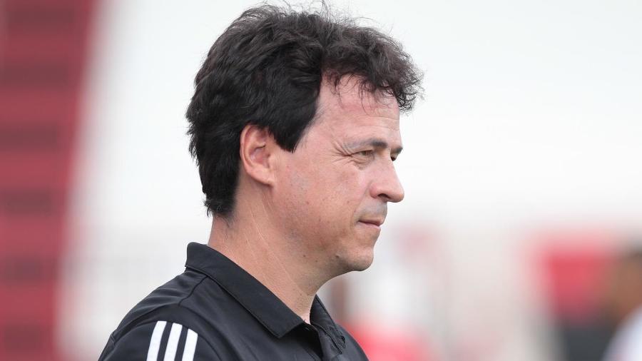 Fernando Diniz deixou o São Paulo e foi oferecido ao Santos no mercado da bola - Rubens Chiri/ saopaulofc.net
