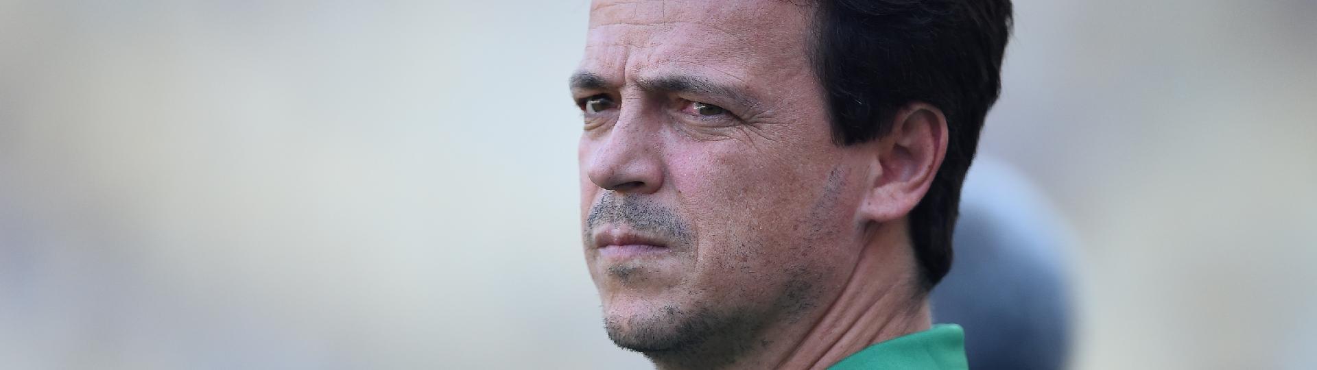 Fernando Diniz, técnico do Fluminense, acompanha jogo contra Botafogo