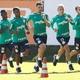 Palmeiras chega a 34 atletas no elenco e segue acima do ideal de Felipão