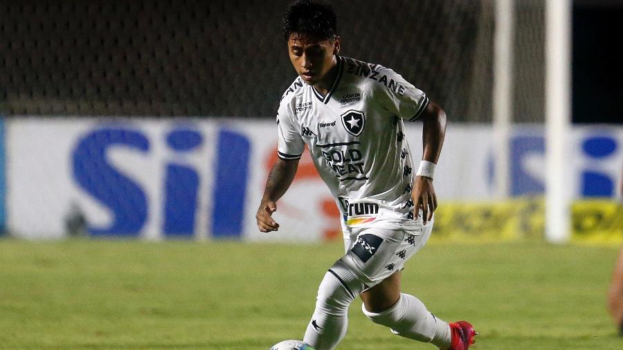 Lecaros, atacante do Botafogo - Vitor Silva/Botafogo