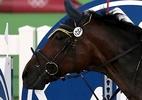 Alemã nega ter maltrado cavalo no pentatlo e lamenta ódio na internet