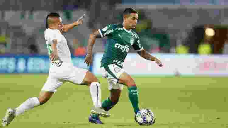 Dudu Palmeiras - Rafael Ribeiro/Florida Cup - Rafael Ribeiro/Florida Cup
