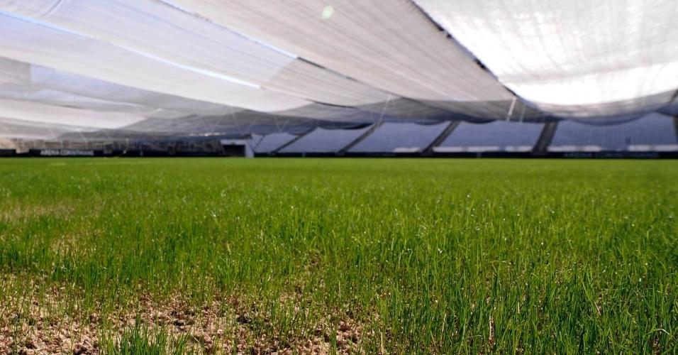 A previsão dos responsáveis é de que o campo possa receber jogos do Corinthians em fevereiro