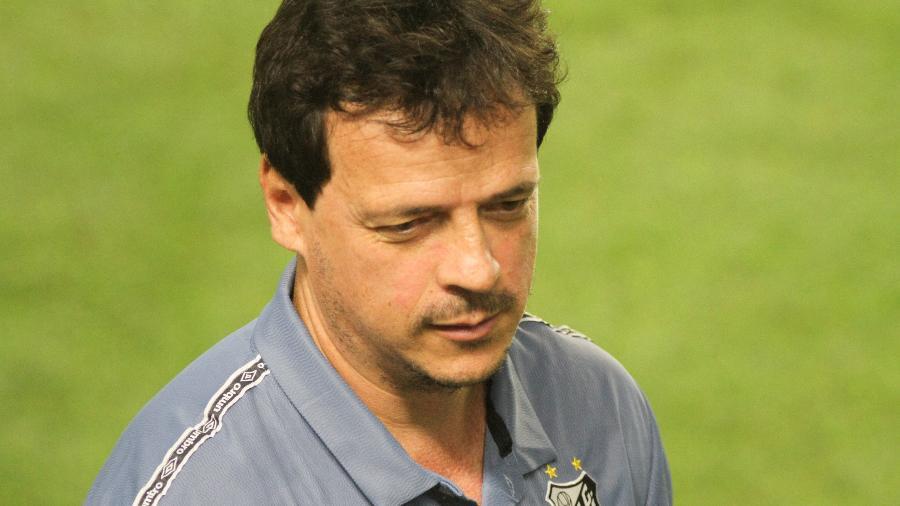 Fernando Diniz, técnico do Santos durante partida contra o Ceara  - Fernanda Luz/AGIF