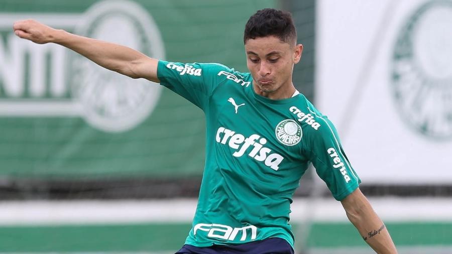 5c0ef554b1a91 Palmeiras: Diogo Barbosa vê time