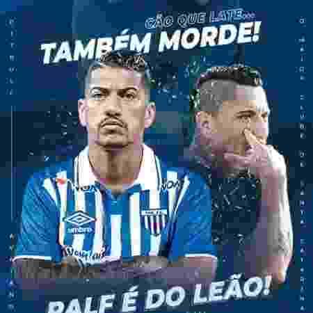 Reprodução/Twitter Avaí Futebol Clube