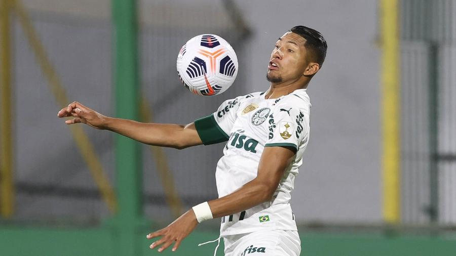 Rony, jogador do Palmeiras, durante partida contra o Defensa y Justicia, pela Libertadores - Cesar Greco